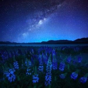 MidnightBlue by AtomicZen