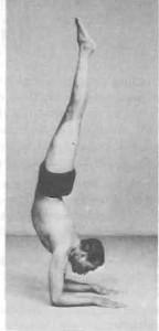 Pincha-Mayurasana-Yoga-Pose-BKS-Iyengar-144x300
