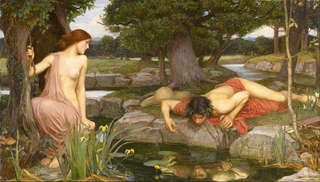 Echo and Narcissus Self-reflection