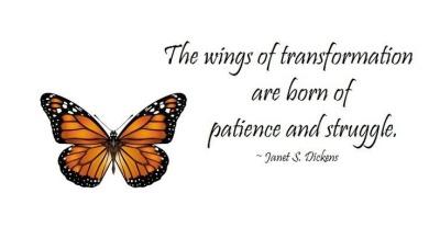 butterflypatience